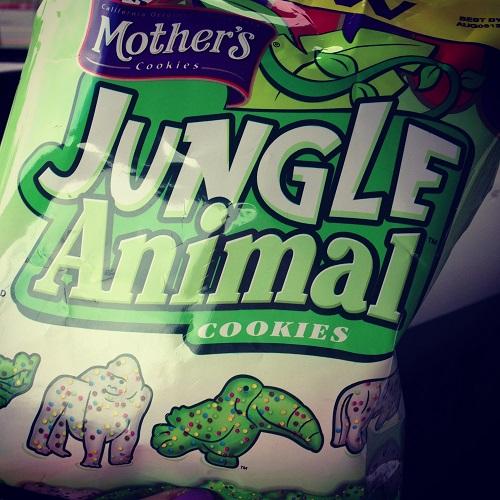 junglecookie