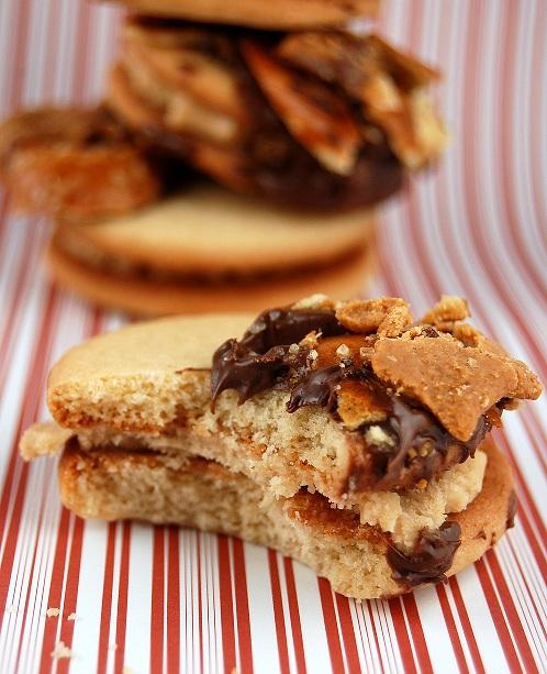 chubbyhubbycookie3