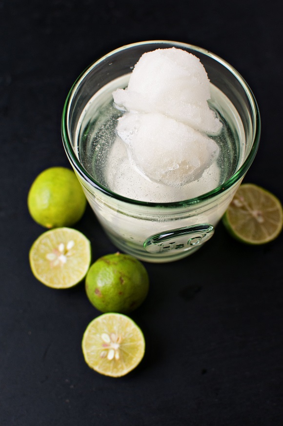 Lime Sorbet Tequila Cocktail 2
