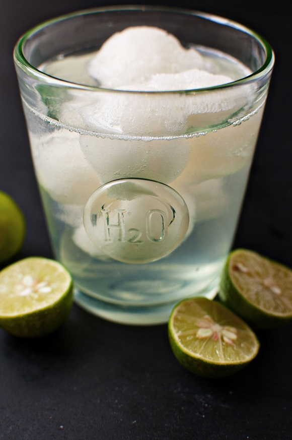 Lime Sorbet Tequila Cocktail 3
