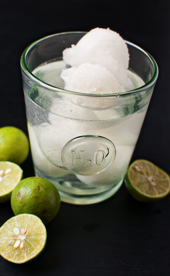 Lime Sorbet Tequila Cocktail