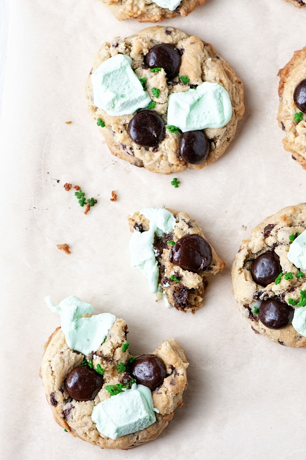Shamrock Cookies 03