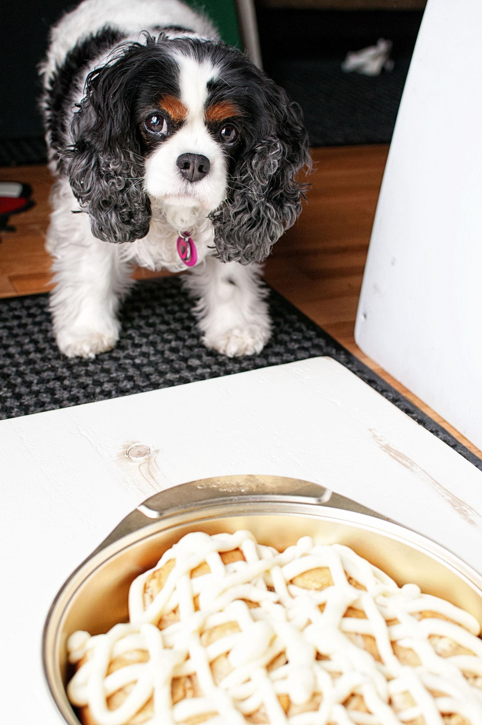 Crissy the kitchen helper.