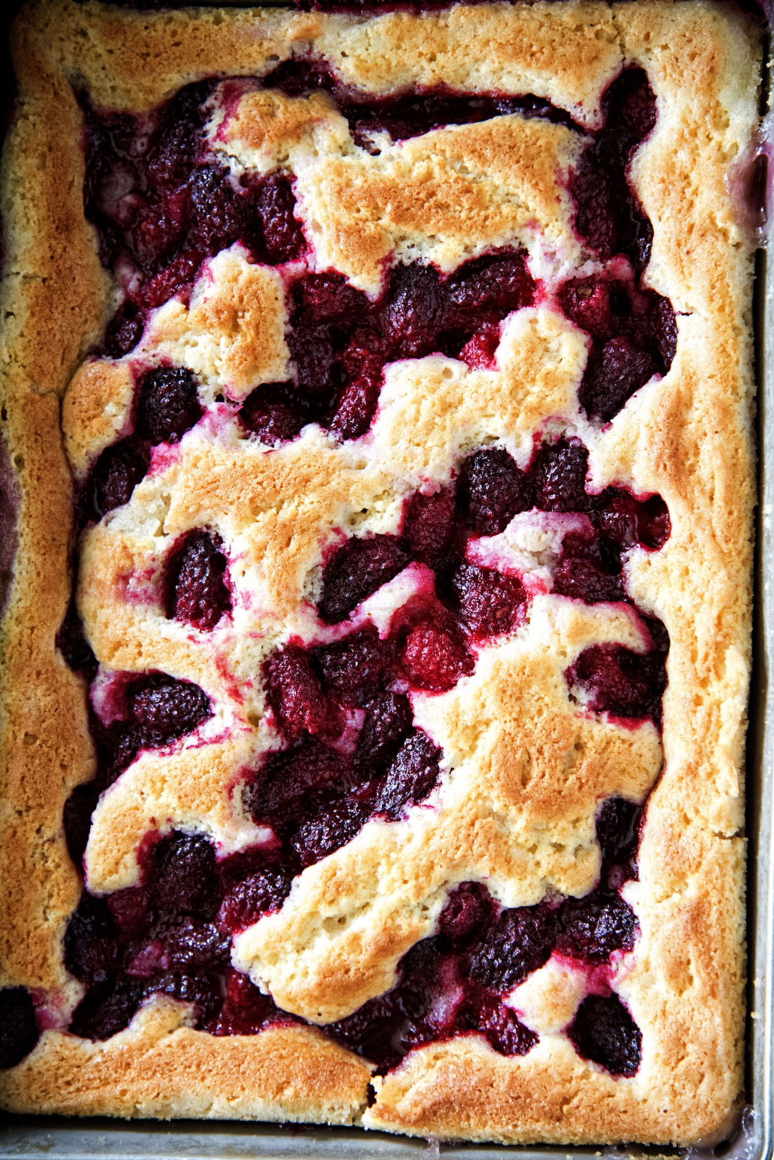 Overhead shot of the full Tayberry Cobbler
