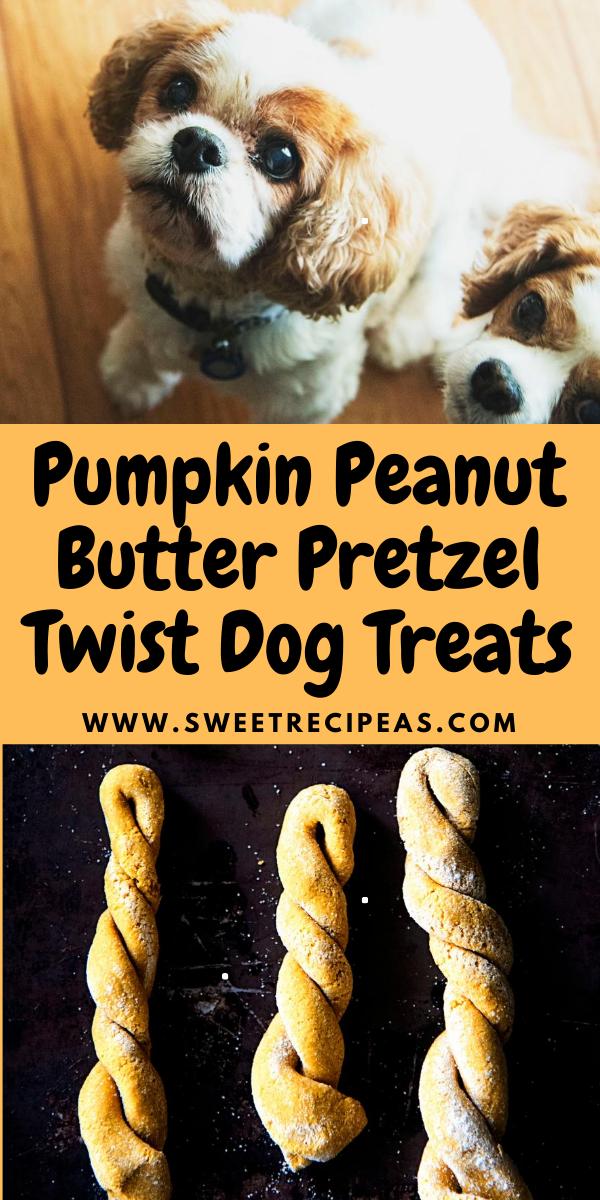 Pumpkin Peanut Butter Pretzel Twist Dog Treats