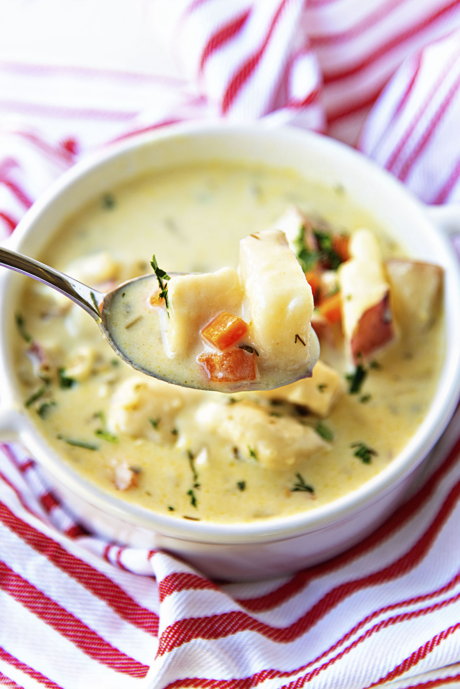 Vegetarian Parmesan Knoephla Soup with spoon close up